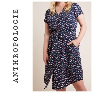 Anthropologie Catherine beach umbrella shirtdress